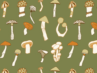 North American Fungi