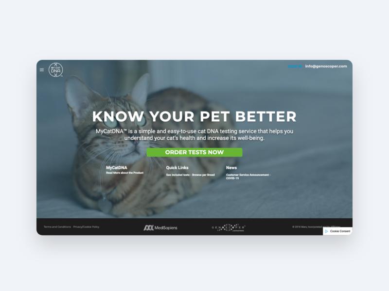 My Cat DNA web ux webdesign