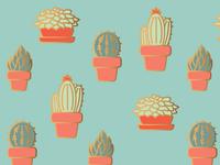 Succulent Pattern Study