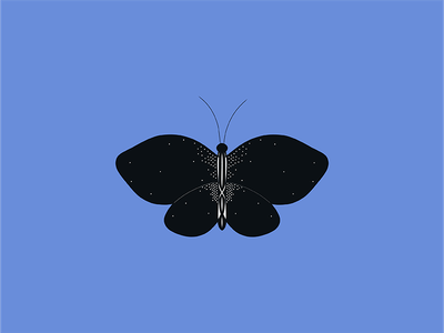 Butterfly Value Experiment drawing experiment find your style geometric black work symmetrical contrast value butterfly
