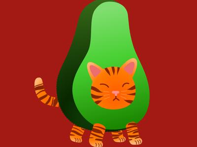 Avogato gato fruits green orange avocado cat