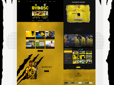 BvB Website Redesign web design ux ui