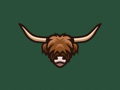 Highland Cow Illustration