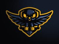 Owl Shield Illustration