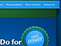 Five Counties Foundation Website concepts