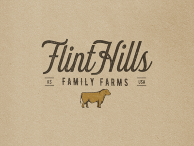 Flint Hills Family Farms farm cow beef brand identity custom type typography logo illustration brand and identity branding design illustrator drawing