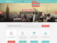 Modus versus homepage turquoise red