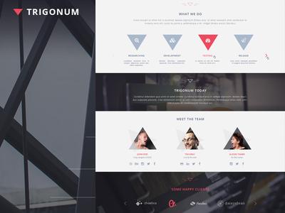 TRIGONUM free psd template