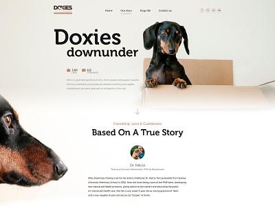 Doxies Down Under branding illustration app ux vector ui typography design graphic  design logo ui web design