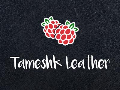 Charm Tameshk Identity raspberry typography identity logo