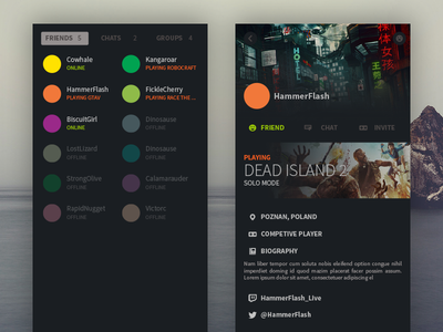 Redesign Steam - Social experience