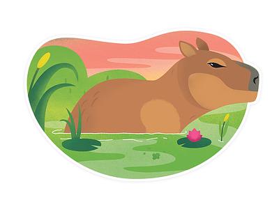 Capybara brazil illustration capybara