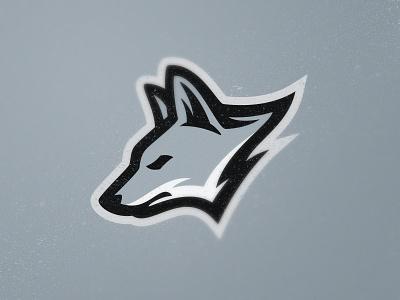 Coyotes esport zoo nature gray fox dog wolf coyote design wild team animal sport mascot logo