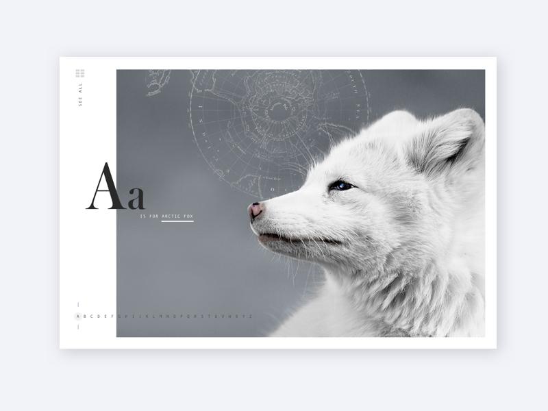 A is for Arctic Fox web layout arctic wildlife fox alphabet