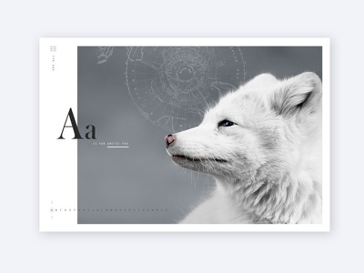 A is for Arctic Fox web layout arctic wildlife fox alphabet