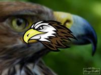 Falcon head logo concept.