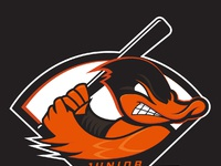 Li jrducks colordark