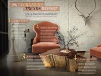 Magazine Layout - Furniture Trends