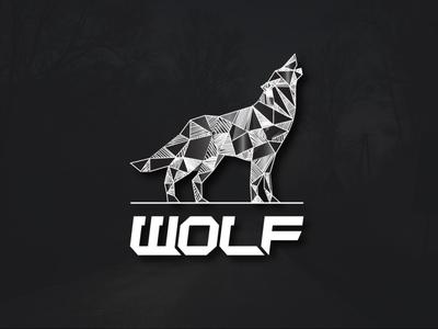 I will design website logo in just 24 hours