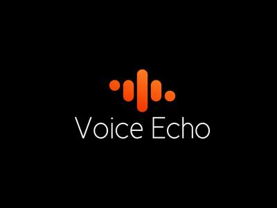 Voice Echo Logo