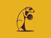 Ferret Pumping Iron