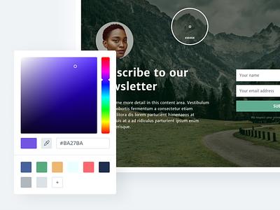 Color picker picker saas web design interface ui colors