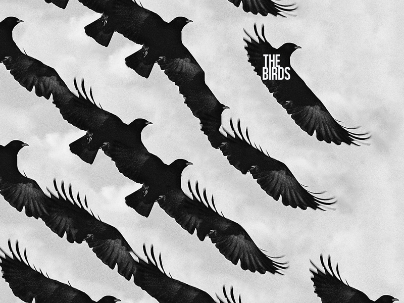 For The Birds fly alfred hitchcock the birds beak wings photoshop bird creepy grain unsplash photo black and white diagonal pattern movie poster accident birds type design