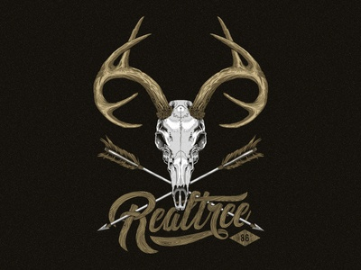 Deer Skull Illustration
