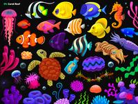 Garmin | Adventure Trail / 04. Coral Reef props