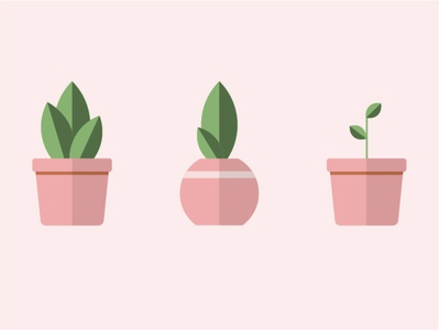 Just because plants