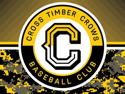 Spring Season Banner yellow branding baseball sports design sports