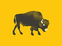 Bison | 365 Animals