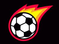 Pleasant Hill Fireballs - Logo