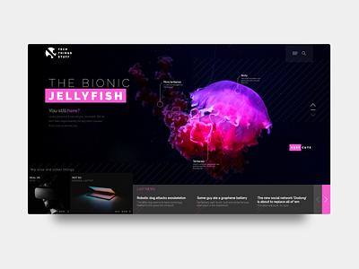 "News Web Concept ""Bionic Jellyfish"" nature interface concept news blog web  design typography flat website web ux vector ui design"