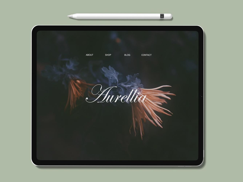 iPad Pro  Mockup profile product tablet app ipadpro ipad