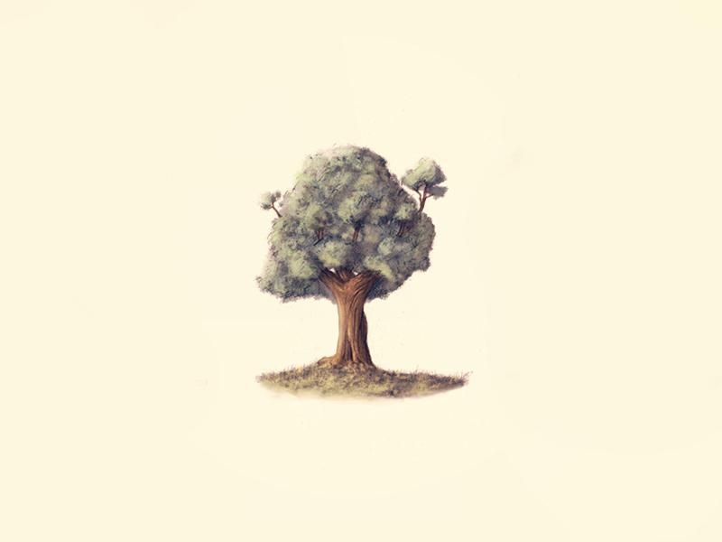Neighbourhood 2 tree trees illustration drawing