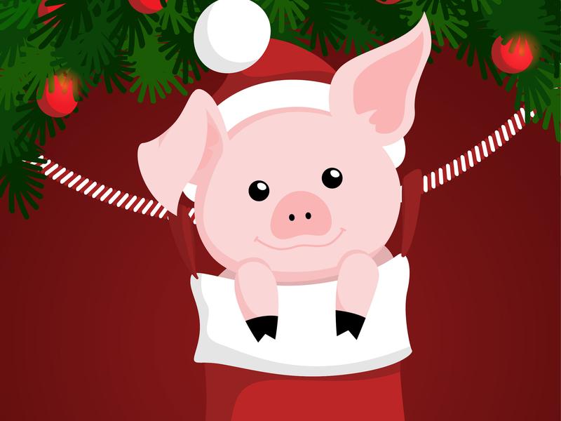Cute Christmas Pig Illustration pig animal christmas vector design illustration