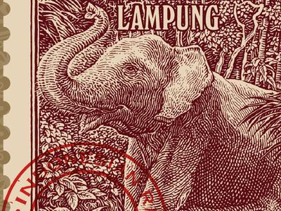 Sumatran Coffee illustration coffee engraving etching woodcut vintage simon frouws indonesia luxury sumatra packaging design packaging