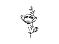 Tea Cup Flowers - BW