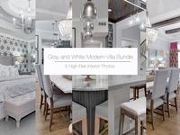 Gray and White Modern Villa Bundle