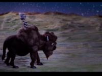 The Last American Buffalo gal