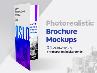 Brochure Mockup Set - Tri-fold