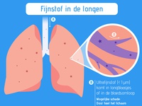 Infographic on dust particles in lungs