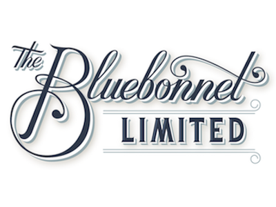 Dribbble first entry bluebonnet 01
