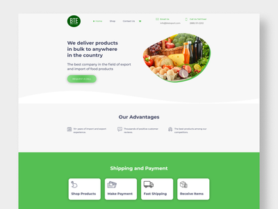 BTE Import Export's business design web ux website design ui