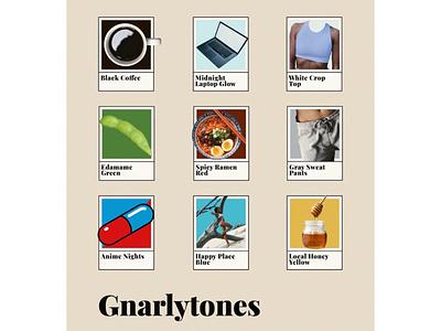 Gnarlytones laptop colors tones illustration illustrator design pantone