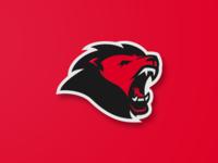 FUTSAKE Mascot Logo