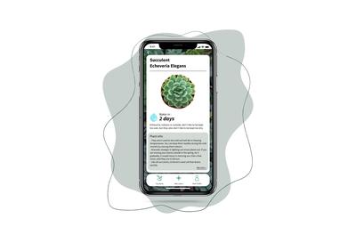 Plant Profile UI