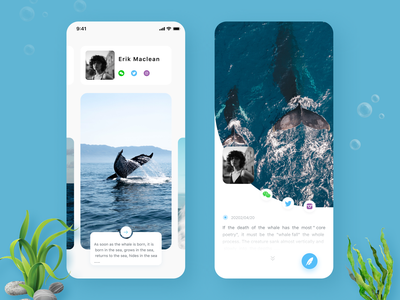 Marine biological knowledge application contracted introduce vacation uiux ios interface illustrations icons graphics figma cuberto knowledge app web design illustration ocean ux ui