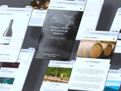 Can Xanet Website Mobile UI
